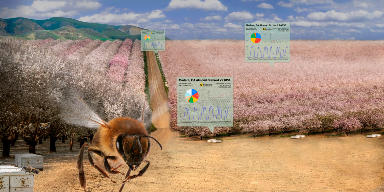 BeeHero smartens up hives to provide 'pollination as a service' with $4M seed round – TechCrunch